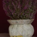 Placki owsiane z dynią (3)
